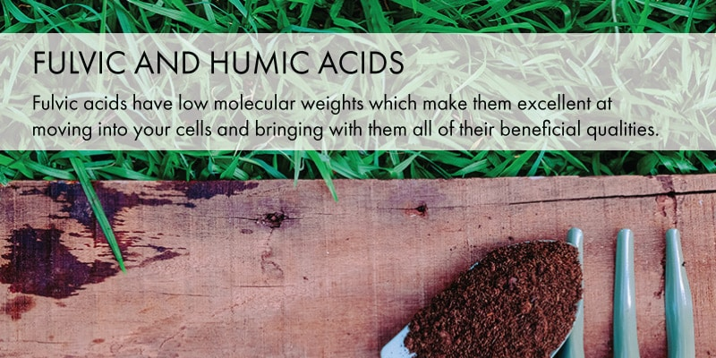 fulom_fulvic_humic_acids