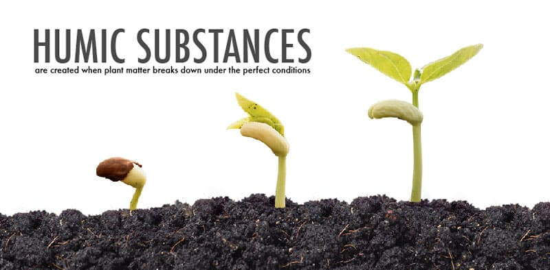 humic-substances-skincare